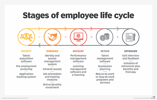 Fases employee lifecycle